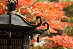 東京都内の樹木葬のお寺の設備について