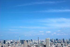 東京23区で樹木葬を行うなら、おすすめはどこ?